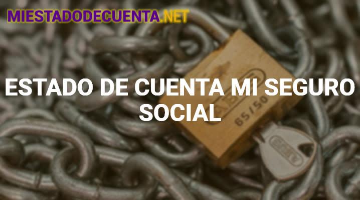 Estado de Cuenta Mi Seguro Social