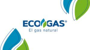 Ecogas conclusion